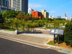 山下公園 バラ園