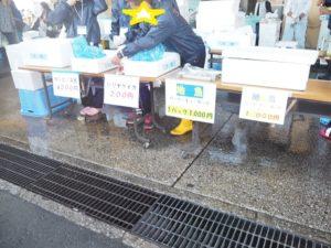 柴漁港 鮮魚 販売