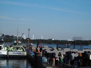 金沢漁港イベント 生のりむしり体験