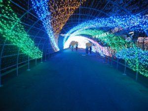よみうりランド イルミネーショントンネル