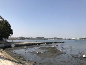 潮干狩り 野島公園
